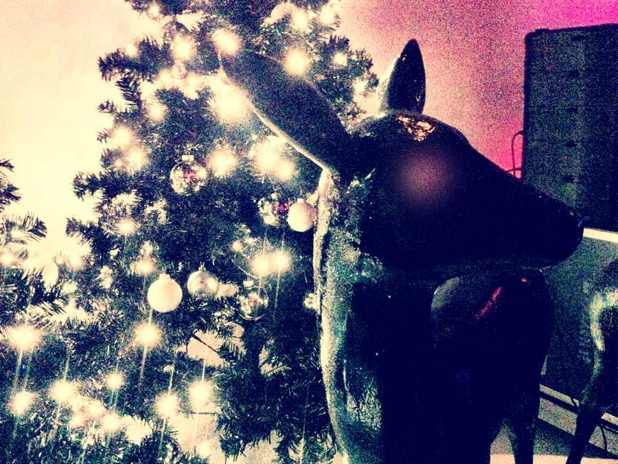 Black Christmas- das Motto der Weihnachtsfeier auch im Barcatering