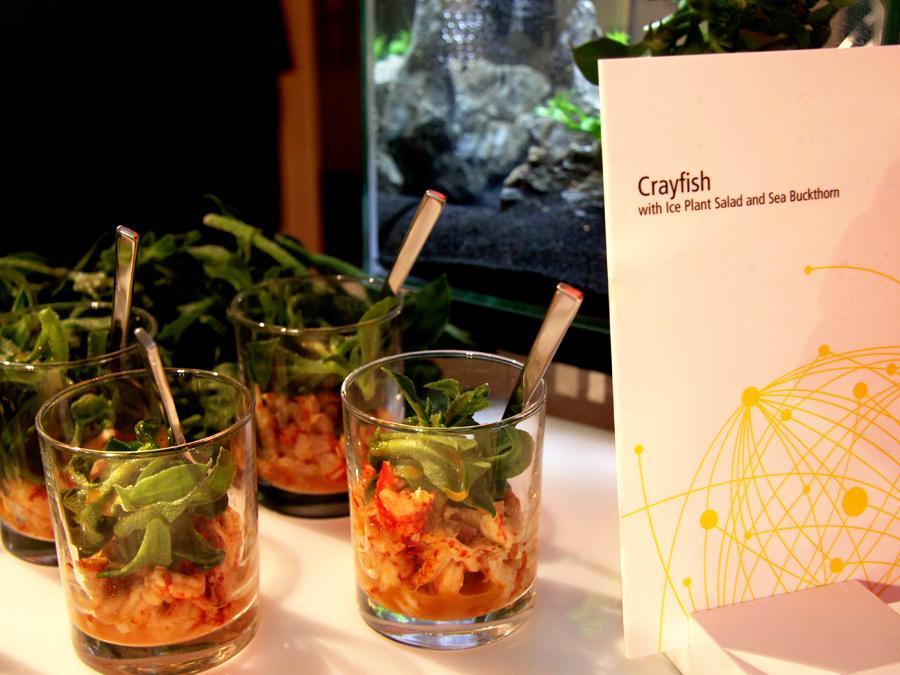 Flusskrebse mit Glacial Salat zum Thema Innovatives Catering